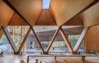 Biblioteca_madera sostenible